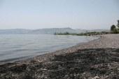 'דגל כחול' על חוף מפרץ אמנון